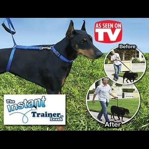 TV items | רצועה לאילוף הכלב | Instant trainer