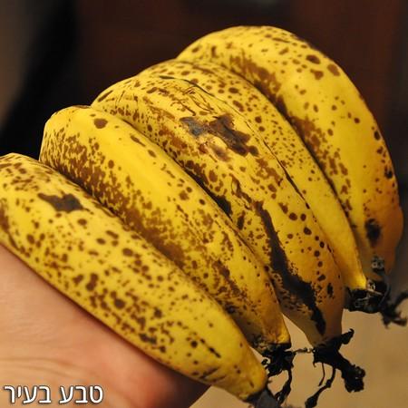 """בננות אורגניות לא מובחלות -החל מ-1 ק""""ג, הנחות לכמויות"""