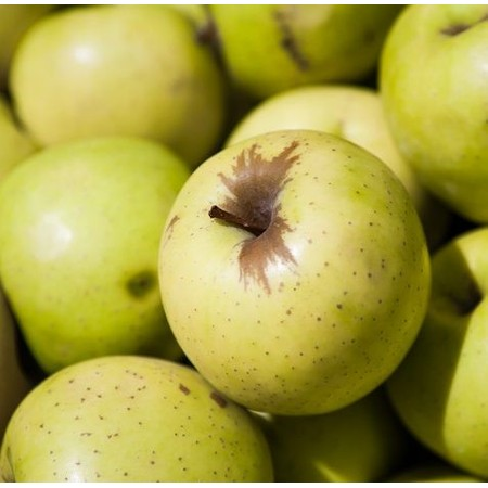 תפוח עץ זהוב אורגני  -יבוא - החל מ-1 קילו