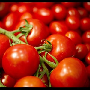 עגבניה אורגנית - אשכולות