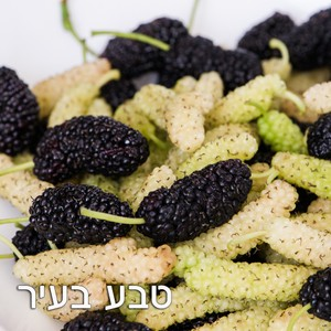 תות פקיסטני - ללא ריסוס