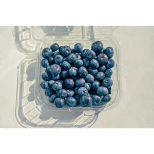 אוכמניות טריות - פיקוח אורגני -החל מ-250 גרם, הנחות לכמויות