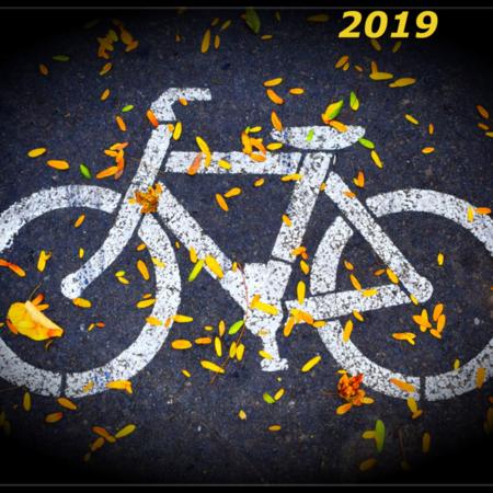 מה יהיה בשנת 2019 עם האופניים החשמליים?