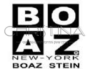 BOAZ-STEIN PROFESSIONAL MAKE-UP
