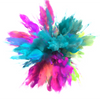 צבעי פיגמנט לאיפור קבוע