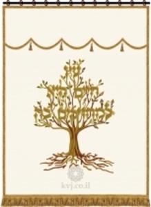 פרוכות עץ החיים מפוארת