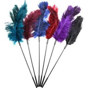 נוצות דיגדוג בצבעים שונים מחוברות למקל