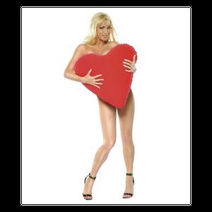 כרית תנוחות מתנפחת בצורת לב