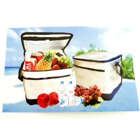 תיק צדנית איזו טרמי לשמירת טריות האוכל / פחרות / ירקות - מעולה לים בריכה